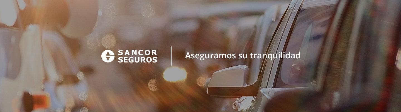 <strong>CONDUZCA SEGURO</strong><br>Múltiples opciones para su auto, con beneficios para todos sus ocupantes.