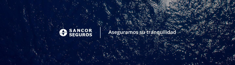 <strong>EMBARCACIONES DE PLACER</strong><br>La mejor protección para sus embarcaciones, cualquiera sea su destino.